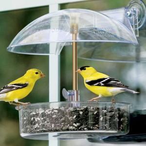 contemporary-bird-feeders